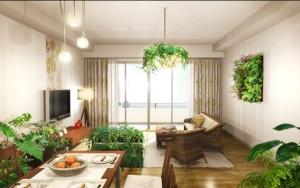 戸建室内緑化