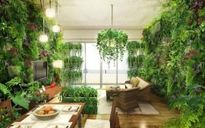 戸建室内緑化 やり過ぎ?