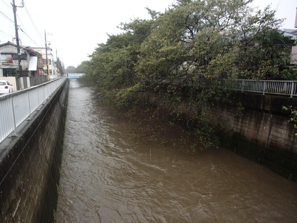 練馬区の台風被害は少なかったようですが、対策工事の効果か?!