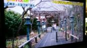 路線バスの旅(^_^)b