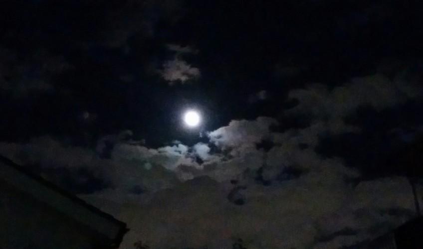 中秋の名月( ^_^)