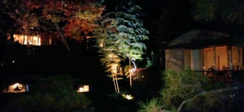 向山庭園のライトアップ(^_^)ゞ