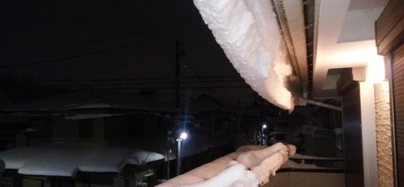 雪(T ^ T)