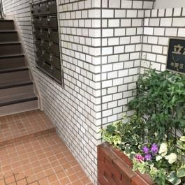 鉄骨階段の化粧直し(^^)