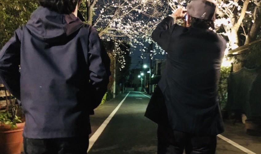 ラ・ベントゥーラの夜桜ディナー(o^^o)